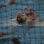 FIN Puglia – Notiziario