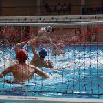 FIN Puglia: è tempo di final four under 15