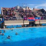 Antares Nuoto Latina: ancora senza piscina, Davoli cerca una soluzione