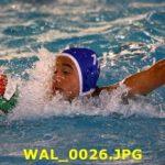 U20 M – Nuoto Livorno – Florentia Sport Team 15-7