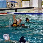 Roman Sport News