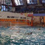 C M – Busto PN: vittoria per i Mastini Biancorossi che battono in trasferta Can Milano