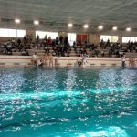 A2 M – Como Nuoto bestia nera del Civitavecchia