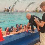 B F – Brutto terzo tempo per la Latina Nuoto, vince l'Agepi