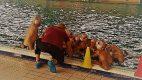 Delta Nuoto 7/ Roma Waterpolo 8 ( 0-2) (2-3) (2-2) (3-1) Roma Waterpolo: Santoni, Savo, […]